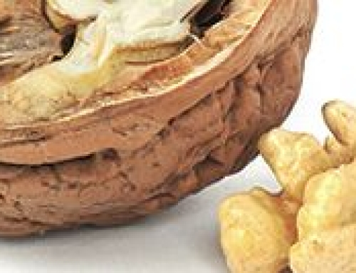 Breast Cancer risk reduced with walnuts